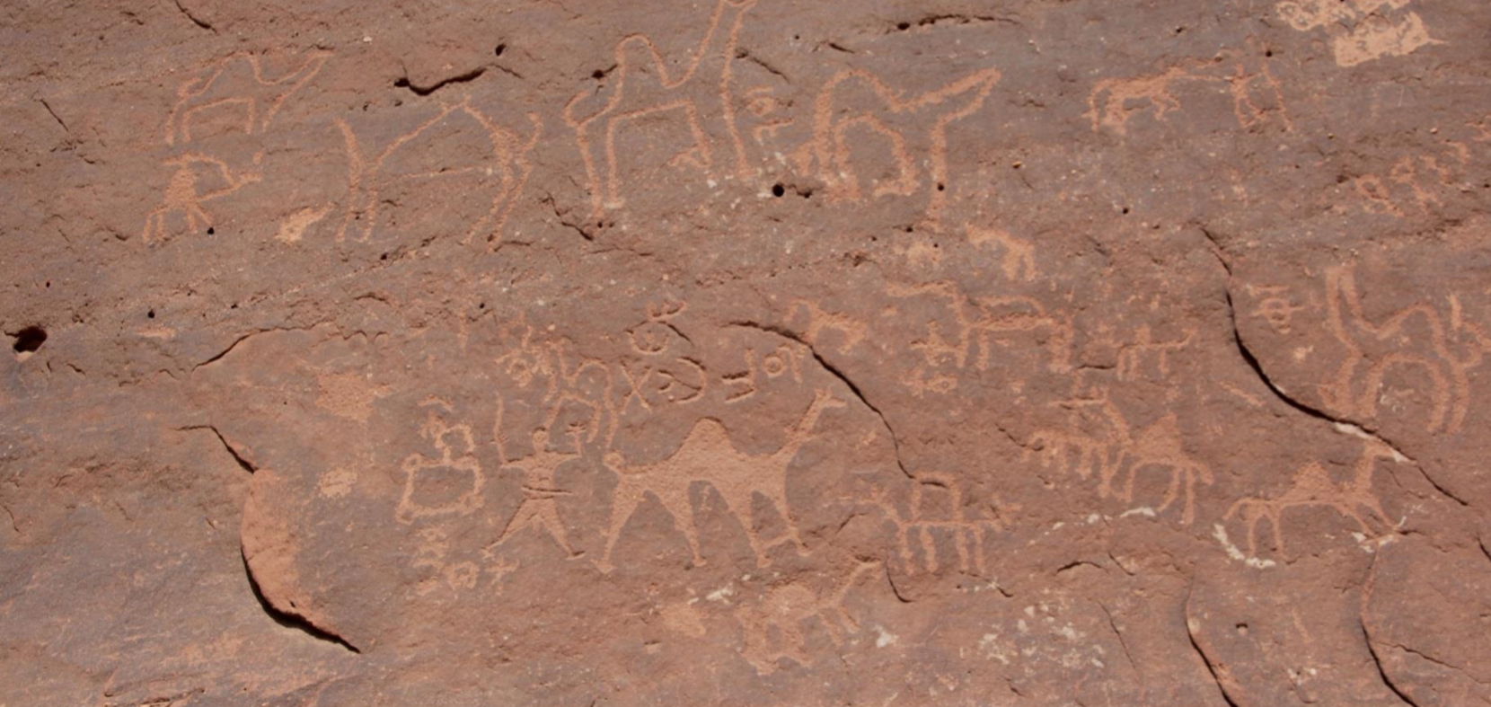 kiveen kaiverrettuja kameleita